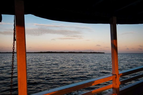 View from a boat in the Amazon Forest project, Para, Brazil.