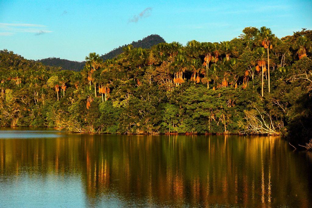 The Laguna del Mundo Perdido in the Cordillera Azul project. Photo © Alvaro del Campo.