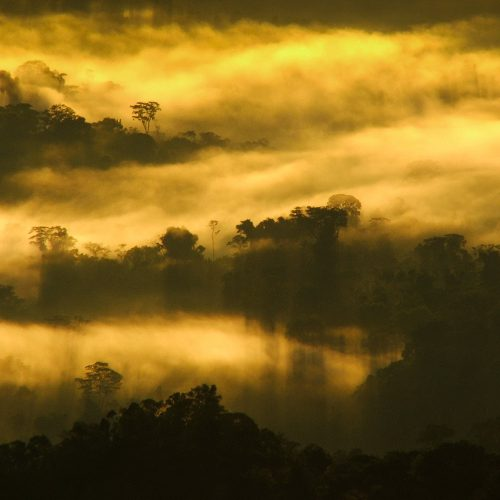 Sunrise in the Cordillera Azul project. Photo © Alvaro del Campo.
