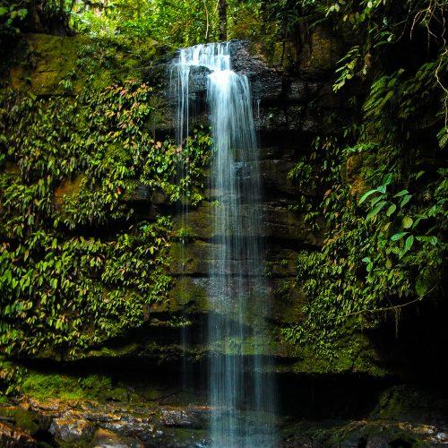 A waterfall in the Cordillera Azul project.