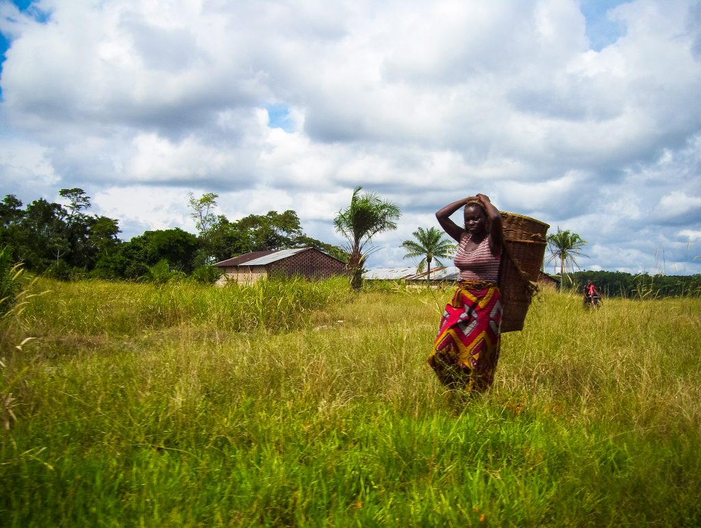 A woman carries her harvest in the Isangi project, Democratic Republic of the Congo.
