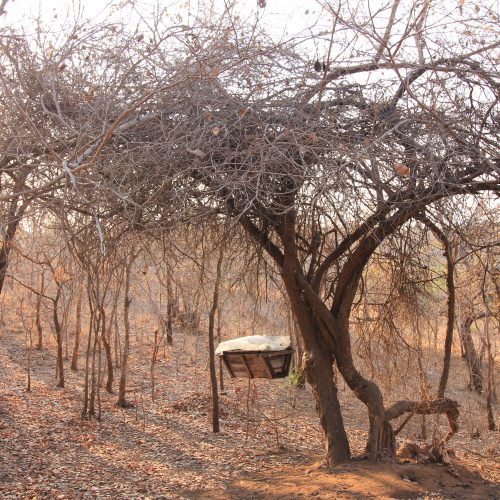 A beehive in the Kariba Wildlife Corridor project.