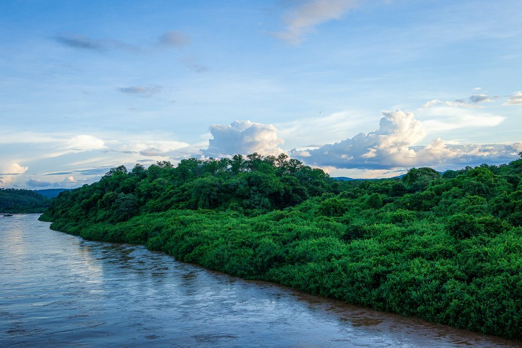 River and forest in the Kariba project, Zimbabwe.