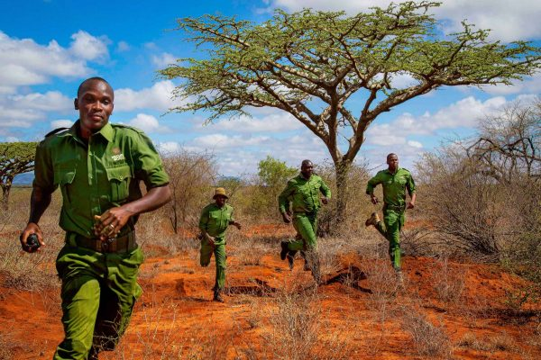 Rangers in action in the Kasigau Wildlife Corridor project.