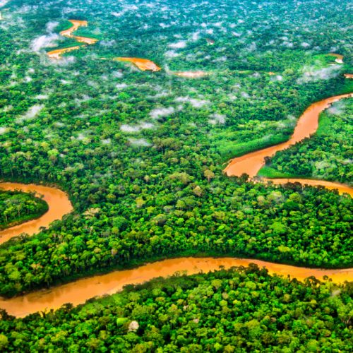River through the rainforest of the Tambopata National Reserve, Peruvian Amazon