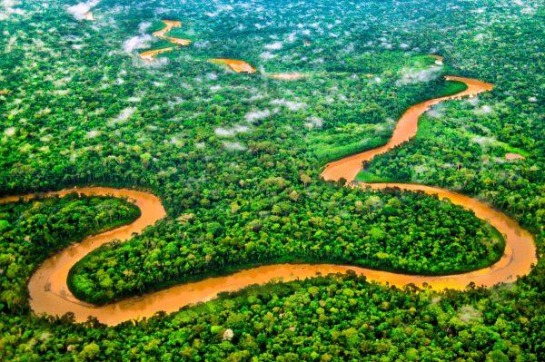 River through the rainforest of the Tambopata National Reserve, Peruvian Amazon