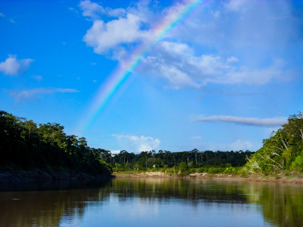 A rainbow over a lake in the Envira Amazonia project.