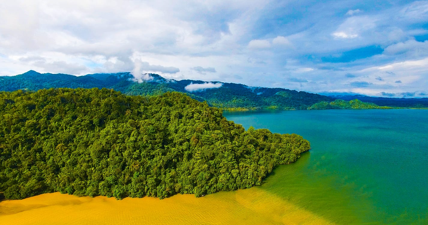 Ocean and rainforest in the Guatemala Conservation Coast project.