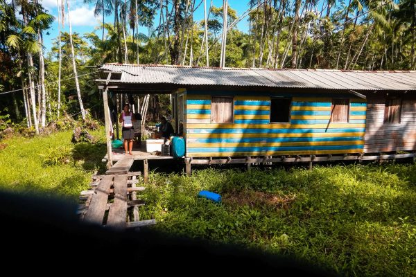 A building in the Amazon Forest project, Brazil.