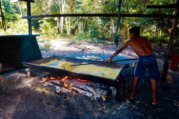 A man prepares corn grains in the Amazon Forest project, Para, Brazil.