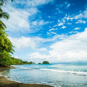 A tropical beach along the Colombian Pacific coast in the Pacific Forest Communities.