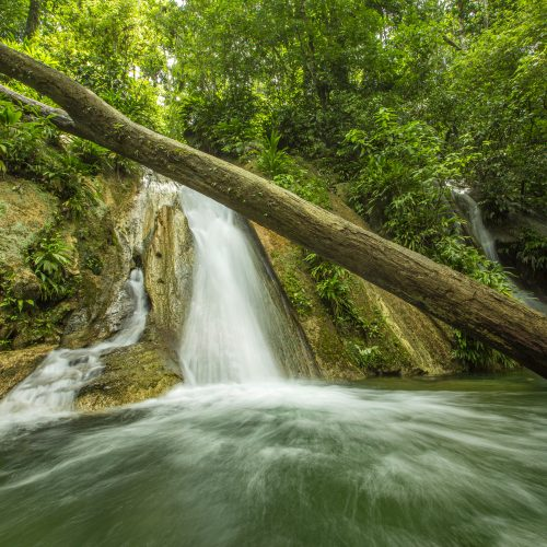 Running water and a waterfall in the Guatemala Caribbean Coast project.