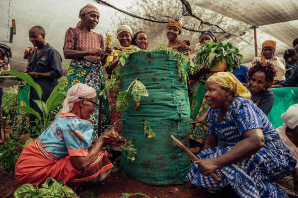 Women in the Kasigau project working with trees. Photo credit: Filip C. Agoo for Wildlife Works Carbon.