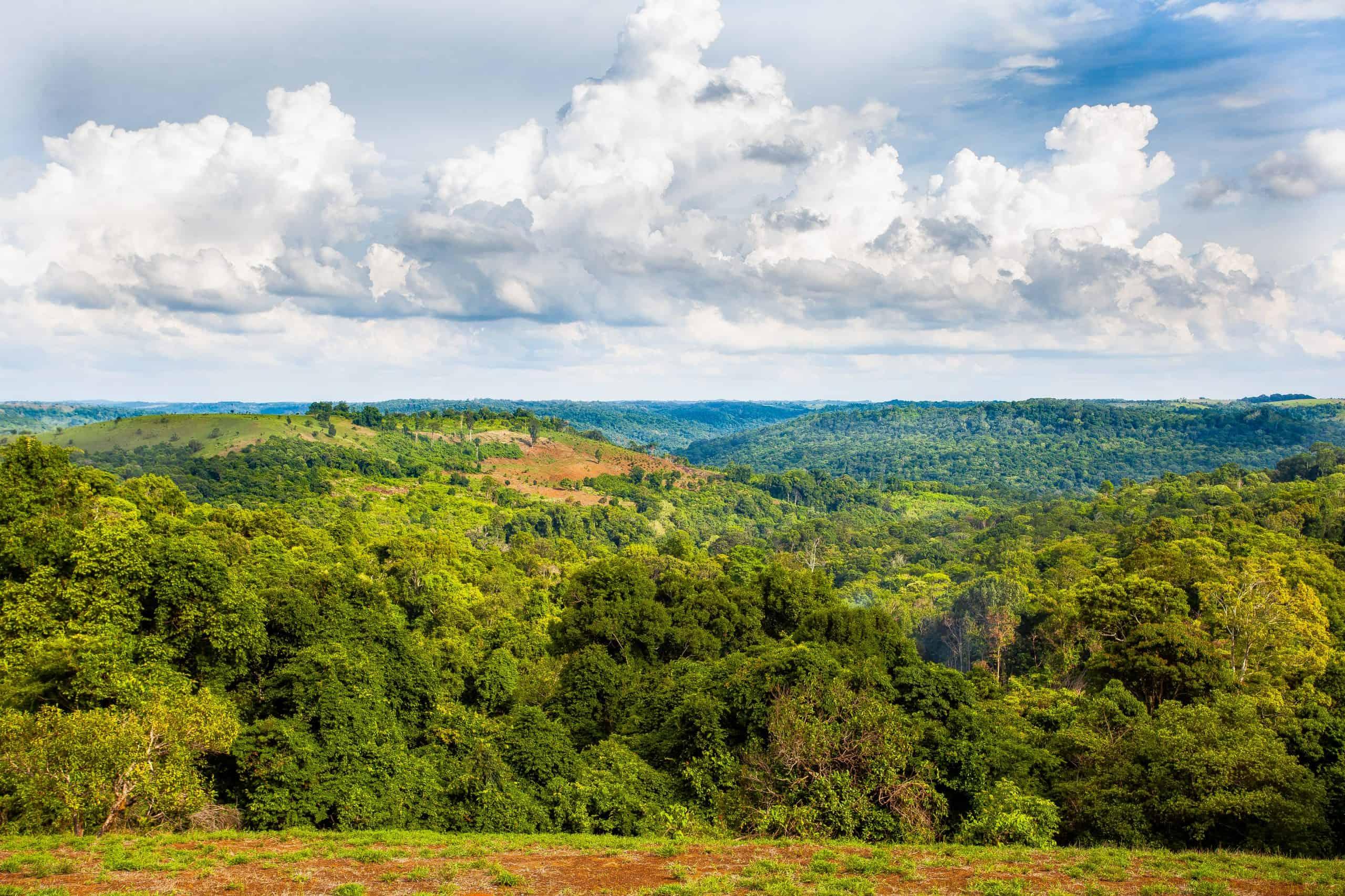 Landscape and forest in the Keo Seima project, Cambodia.