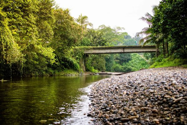 A river and bridge in the Pacific Forest Communities project, Colombia.
