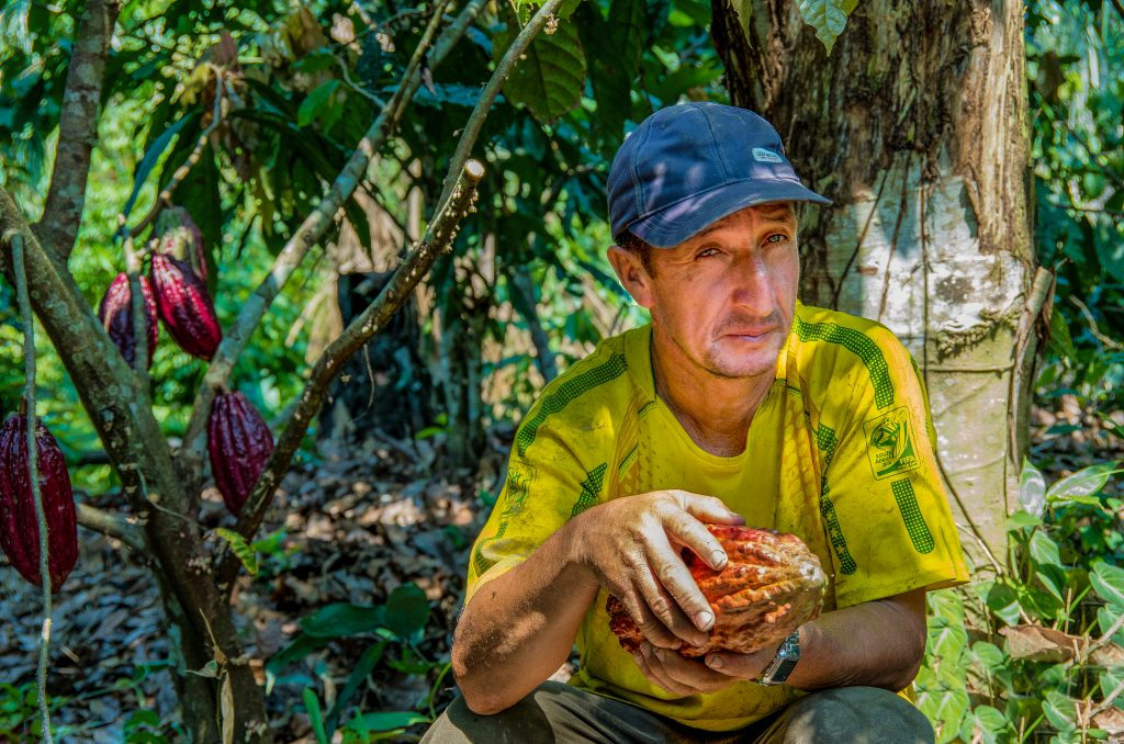 Victor Cordoba, a cacao producer in the Tambopata project, Peru, holds some of his cacao fruits.